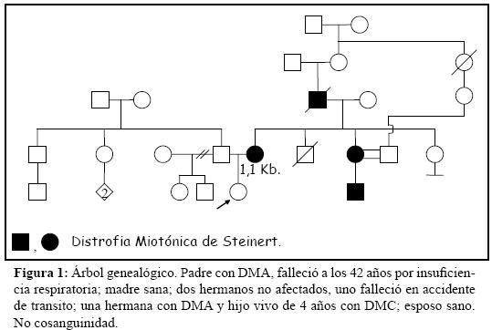 Multidisciplinary management and prenatal diagnosis of