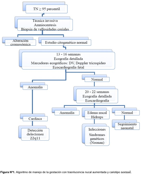 MANAGEMENT OF THE FETUS WITH INCREASED AT NAPE TRANSLUCENCY